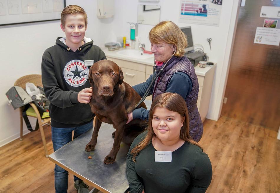Tierarzt kennenlernen