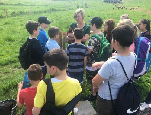 Klasse 5a: Besuch auf dem Bauernhof