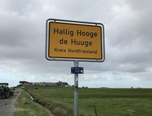 Erfahrungsbericht: Studienfahrt zur Hallig Hooge